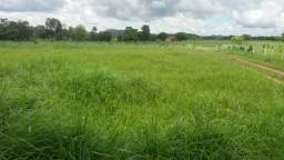 Fazenda 136alq em Crixás-Go