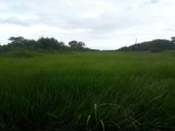 Fazenda com 153 hc. em ceara mirim com bastante estrutura pronta para irrigação