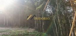 Título do anúncio: ÓTIMO TERRENO EM CAMPO LARGO! 20.000m² DE ÁREA TOTAL