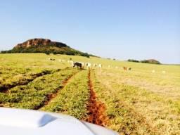 Fazenda 770 Alqueires Municipio Parauna/Rio Verde