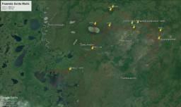 Fazenda 5490 Ha - Pocone - MT - Pantanal - Gado