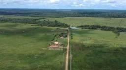 Barbada!!! Vendemos Uma Fazenda com 9.000hectares no Estado do Pará