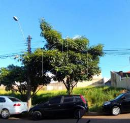 Terreno à venda em Jardim sao francisco, Marilia cod:V11696