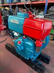 Motor Diesel Estacionário NSB 11