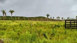Fazenda para pecuária em Vargem Grande-MA. 937 hectares, ótima logística!