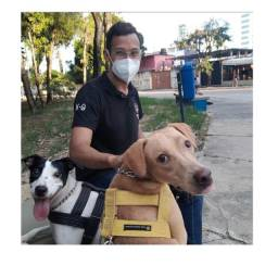 Título do anúncio: Passeador de Cães