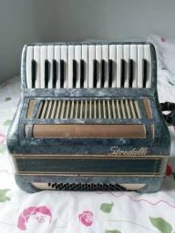 Sanfona acordeon gaita 48 baixos