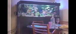 Vendo aquario com móvel 150x60x50