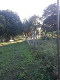Vendo excelente chácara as margens da ma 216** 30 hectares em Penalva ma