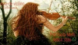 Aulas de Violino (bairro da Madalena ou a domicílio)
