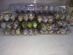 """Ovos de codornas"""" in natura"""" ou já prontos para comer"""