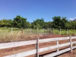 Sítio no Distrito rural de Uraí  em Uraí  - PR