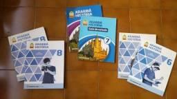 Promoção tudo por R$100 acervo de livros de ensino fundamental