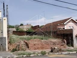 Terreno para alugar em Palmital, Marilia cod:L9938