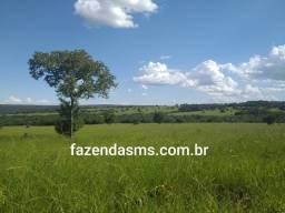 Rio Negro-MS 670 hectáres 80% formada