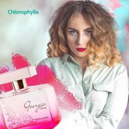 Perfume Geórgia Fashion