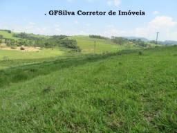Terreno 20.000 m2 ótimo local para chácara Vista maravilhosa Ref. 110 Silva Corretor