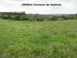 Terreno 20.000 m2 ótimo local Poço artesiano Lúz Oportunidade Ref. 133 Silva Corretor