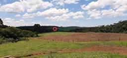 Título do anúncio: Fazenda de 94 Alqueires no Guará . 8 km da BR 277 - Guarapuava PR