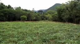 Maquiné - 3 km do Centro - 0,7 ha Beira de Rio