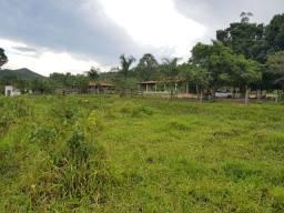 Fazenda 14 Alqueire  na Beira do Asfalto