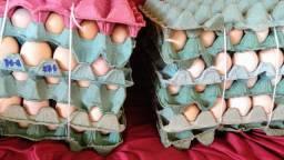 Ovos de capoeira selecionados na promoção