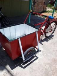 Bicicleta com carroça