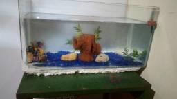 Vendo aquário ou faço troca vem nele