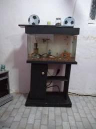Vendo um aquário com movel