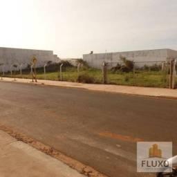 Terreno residencial para locação, Novo Jardim Pagani, Bauru - TE0455.