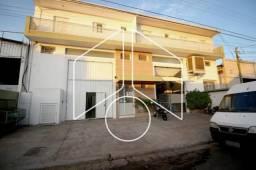 Apartamento para alugar com 2 dormitórios em Alto cafezal, Marilia cod:L5729