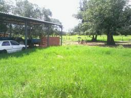Fazenda 59 Alqueires a 26 Km de Serranopolis