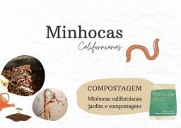 Título do anúncio: Minhocas californianas - compostagem, jardim e pesca