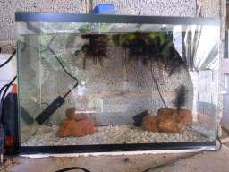 Vendo aquário usado poucas vezes estado de novo