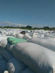 Silo ensacado em sacos brancos de 180 micras