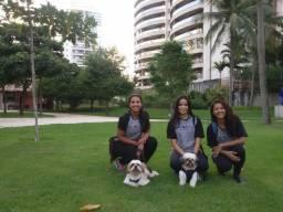 Cuidados para Cães - The Savior (Passeios - Hospedagens - Pet Sitter- Adestramento)