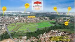 Loteamento aberto / Solange Parque, Bairro Goia / Goiânia Viva / Entrada de 1.176,00