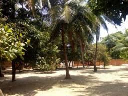 Oportunidade: Vendo Sítio com Casa no Timbuba(Próximo Praia Panaquatira)