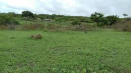 Área medindo 60 hectares
