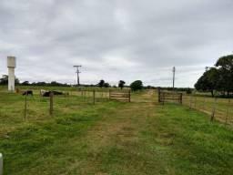 Fazenda de 163 alqueires mun. de Rancharia (arrendada p/ cana) troco em MS