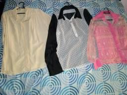 3 camisas sociais feminina
