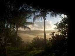 Fazenda no litoral da Bahia