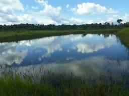 Vendo 3 fazendas no Amazonas  15.000ha,25.000he,10.000he