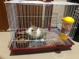 Título do anúncio: Vendo coelhinho com gaiola
