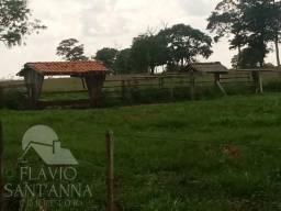 Vende-se fazenda no Rio Aporé/ Paranaíba-MS