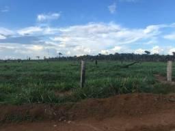 Fazenda 280 alqueires em Rondônia