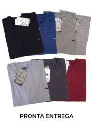 Camiseta Masculina Lisa Básica T-shirt Algodão Fio 30.1