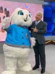 Visita do coelho da Páscoa