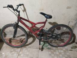 Bicicleta 250