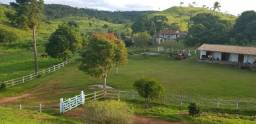 Fazenda Produzindo À Venda , Investimento Certo - Oportunidade!!!